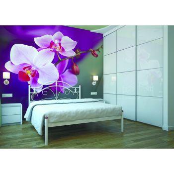 Полуторная кровать Диана Металл - Дизайн 120*190-200 см